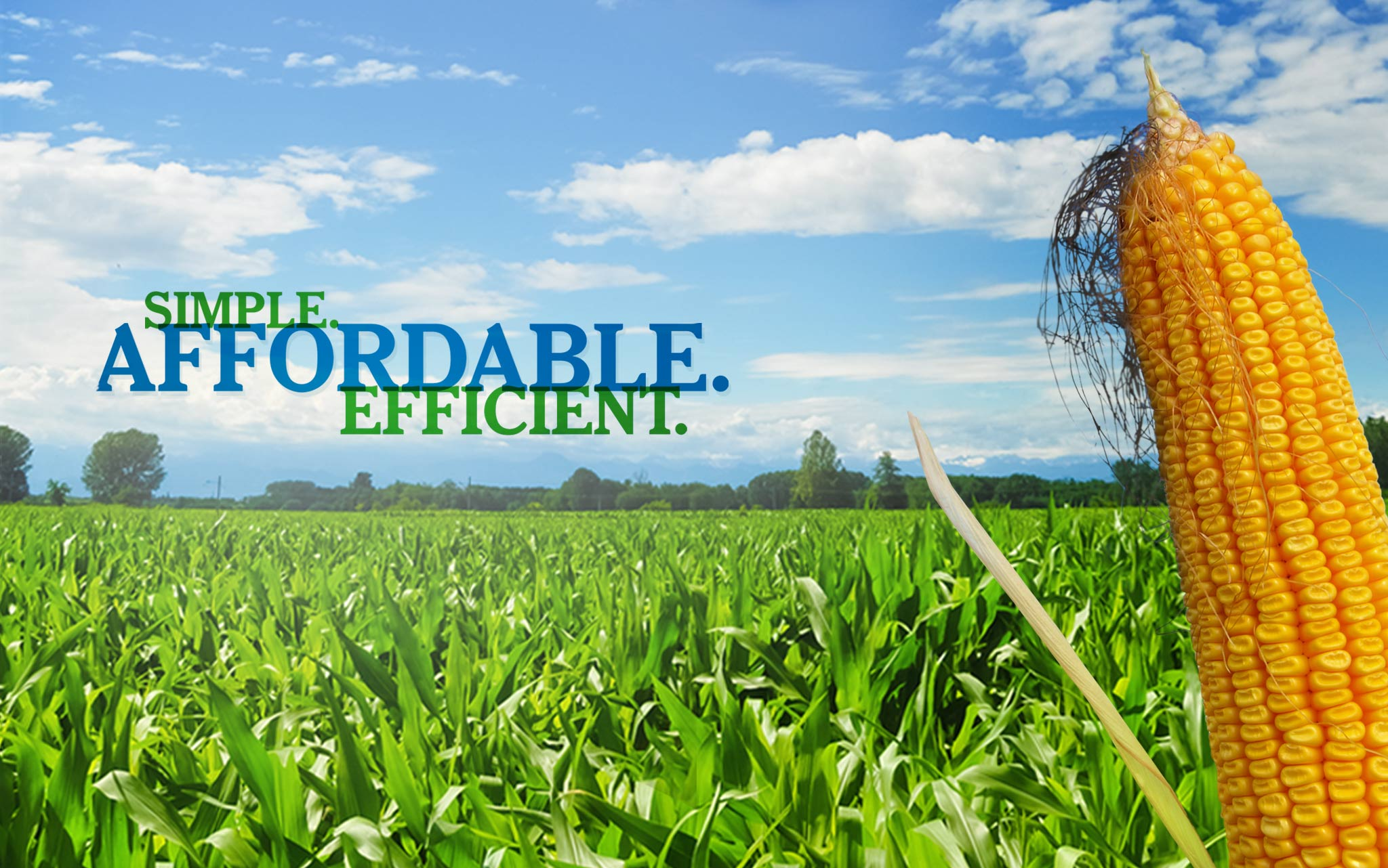 ecodrip simple affordable efficient drip irrigation systems